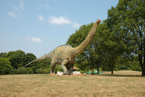 Dinosaurs Left a Lasting Impact as They Walked the Earth